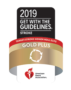 2019 Gold Plus Stroke Award