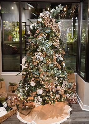 Tree in storefront during Festival of Trees